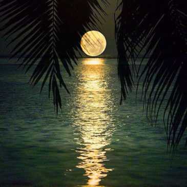 Luna piena, caricati di energia